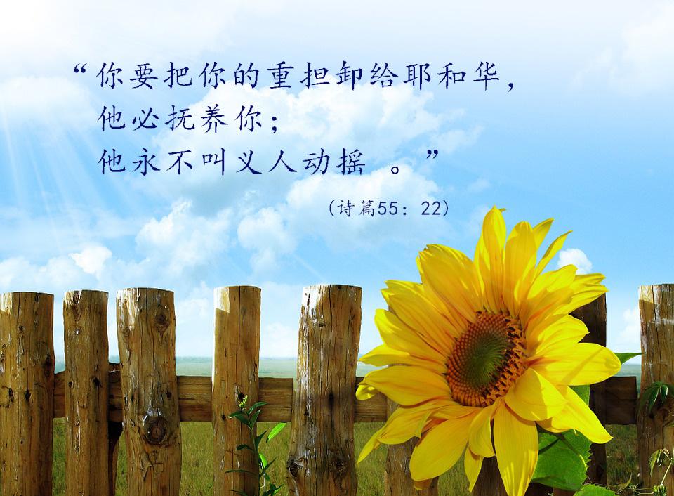 鼓励经文(图) – Word Of God Heals